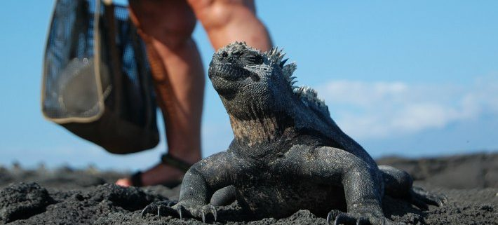 Galapagos Islands, history, humans, colony, settlers, pirates, spies