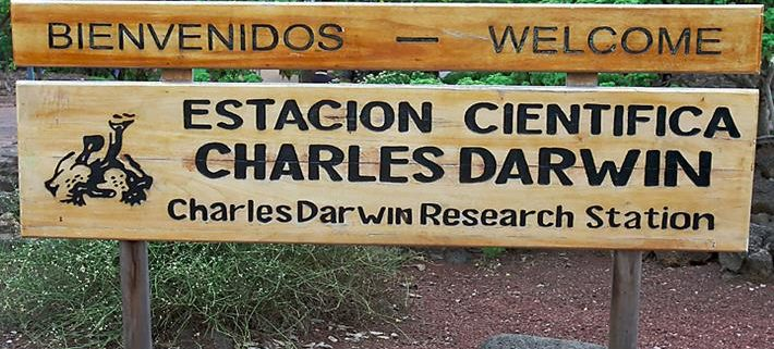 Galapagos Islands, Charles Darwin Research Station, Charles Darwin Foundation, conservation, science, tortoise breeding
