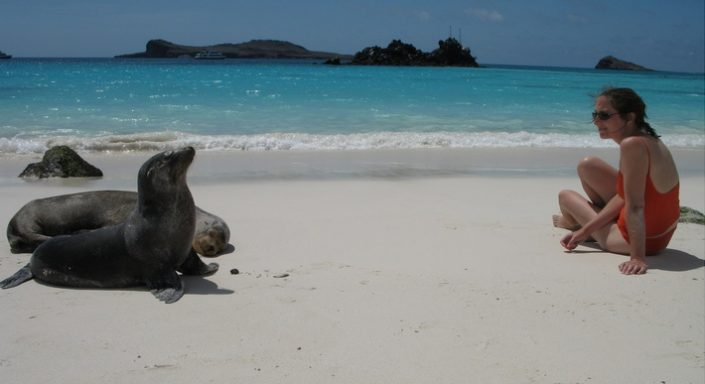 Galapagos, Galapagos Islands, mammals, dolphins, whales, sea lions, fur seals, rats, bats, goats, humans
